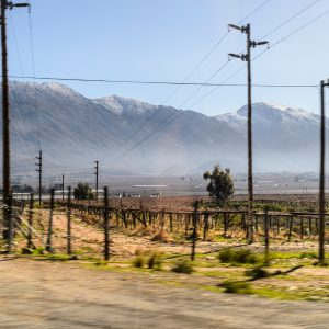 Landscape of wine country near Cape Town with mountain in the background, power lines in foreground.