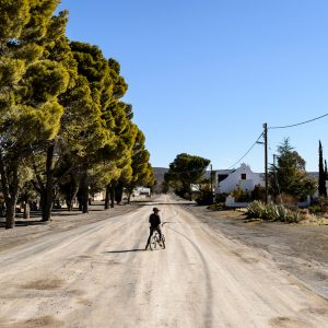 A boy pauses on his bicycle on a dusty rode in Sutherland, South Africa. Trees, a few houses, blue sky.