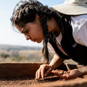 UW-Madison student Talia Sankari uses a sifting screen to sort for potential artifacts